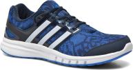 Adidas Performance Galaxy Elite 2 M