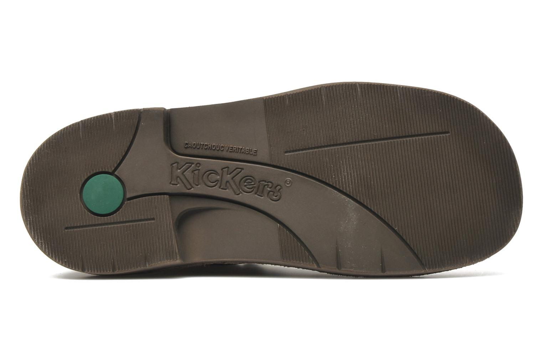 Schnürschuhe Kickers Kick col braun ansicht von oben