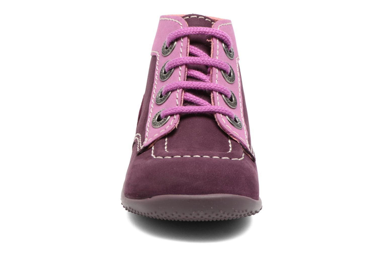Bottines et boots Kickers Bonbon Violet vue portées chaussures