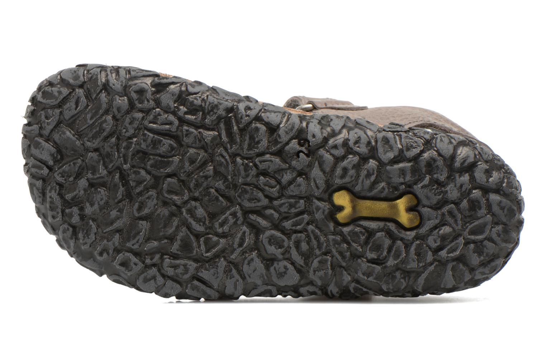 Sandali e scarpe aperte Stones and Bones Ranco Grigio immagine dall'alto