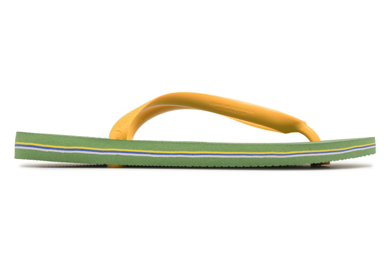 Brazil Logo H Green Bamboo