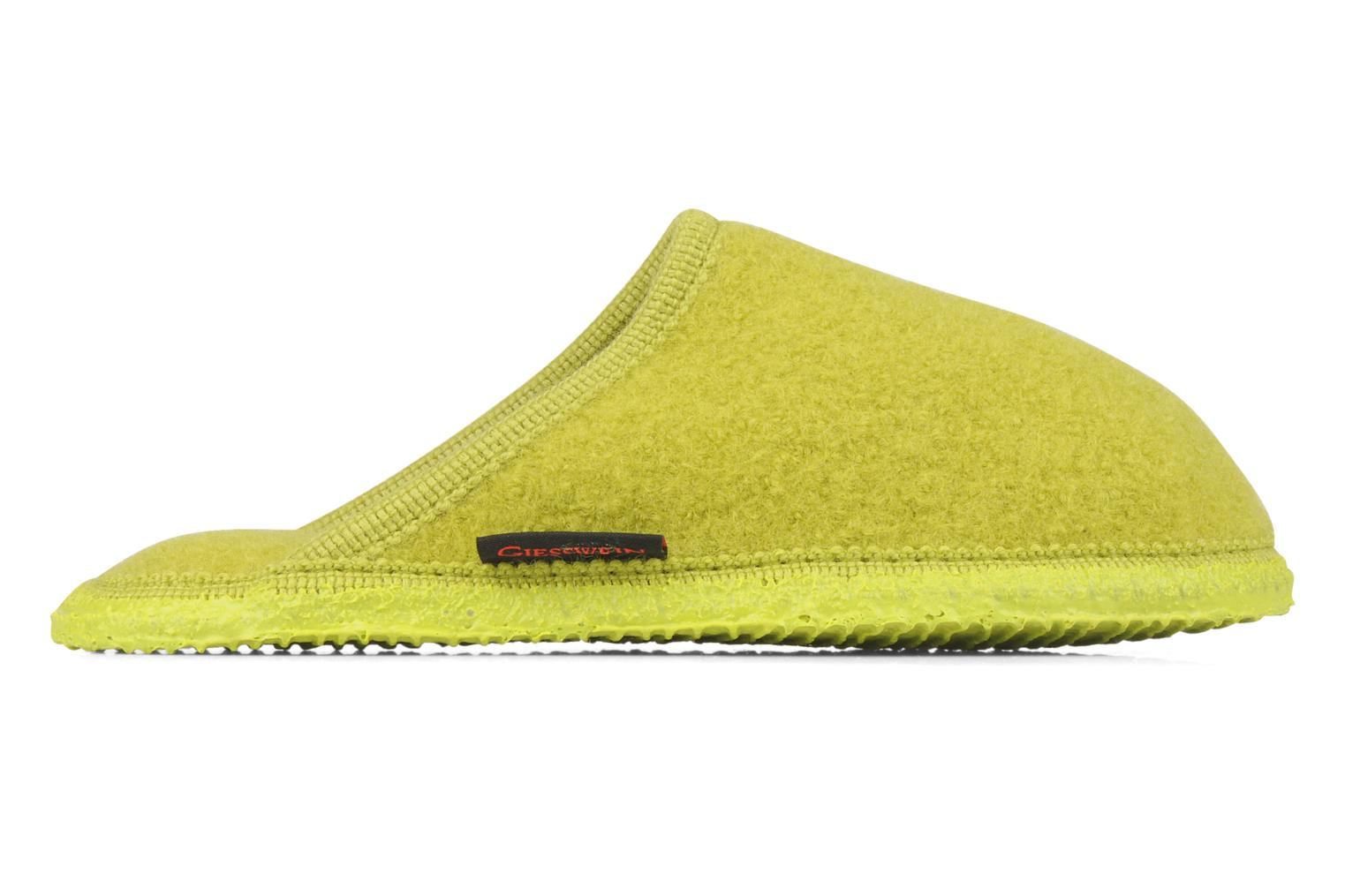 Slippers Giesswein Tino W Green back view