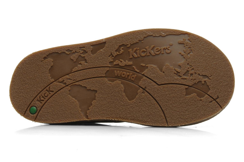 Stiefeletten & Boots Kickers World braun ansicht von oben