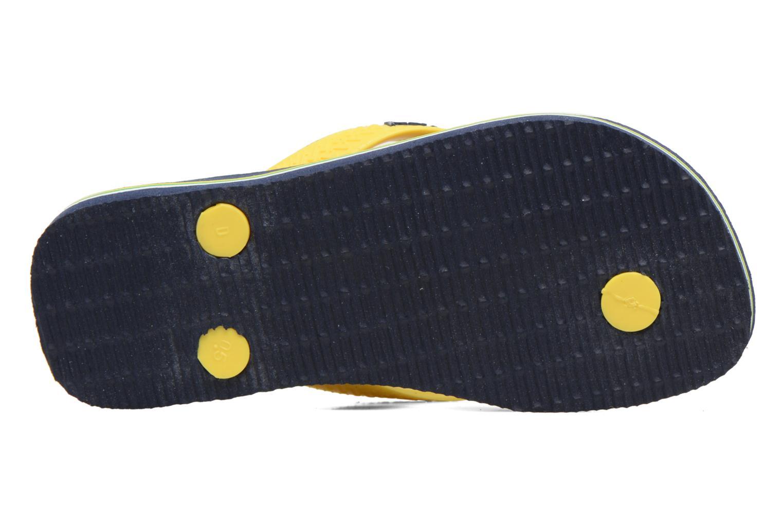 Slippers Havaianas Brasil Logo E Blauw boven