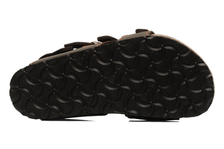 Sandales et nu-pieds Birki's Ellice E Marron vue haut