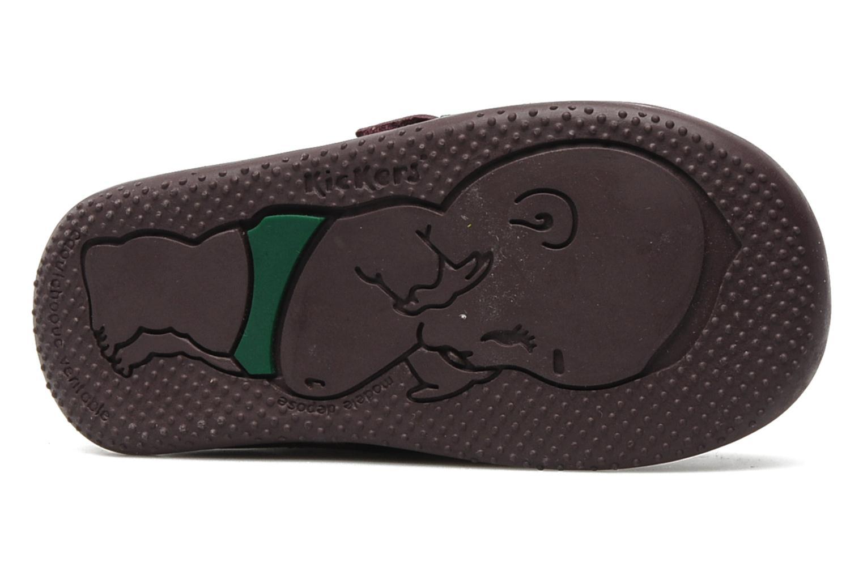 Chaussures à scratch Kickers Bilou Violet vue haut