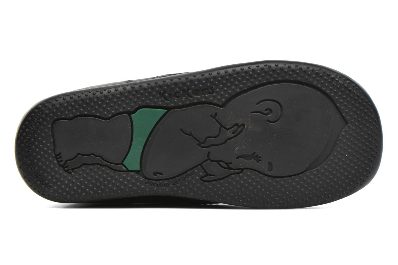 Zapatos con velcro Kickers Bilou Negro vista de arriba