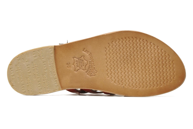 Sandali e scarpe aperte Les Tropéziennes par M Belarbi Herisson Rosso immagine dall'alto