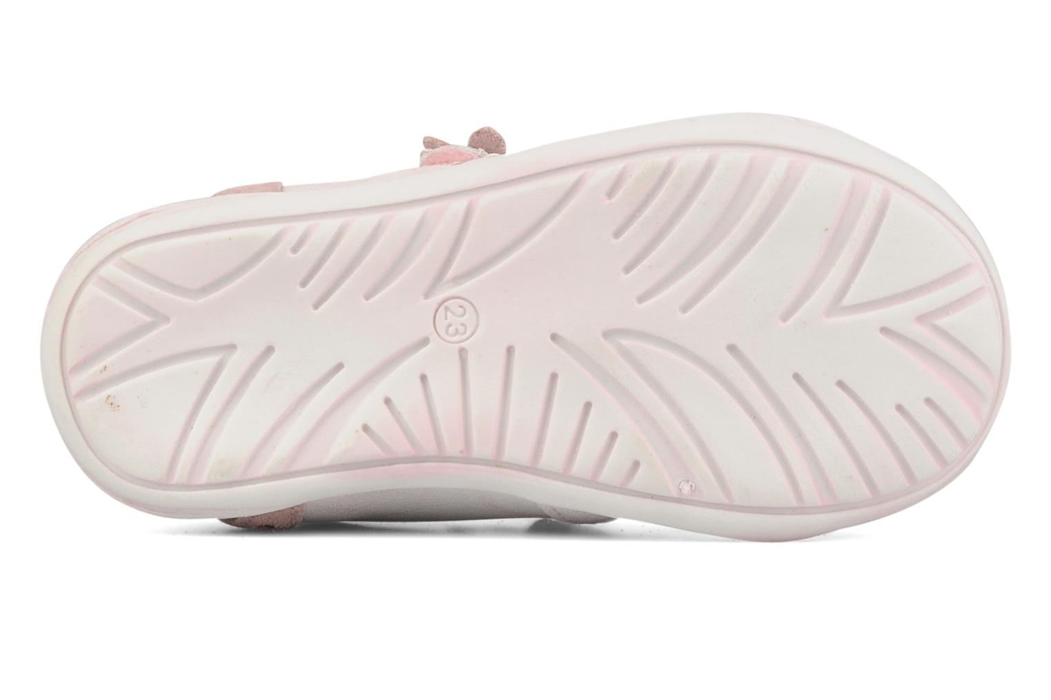 Trainers Primigi Diolly-e Pink view from above