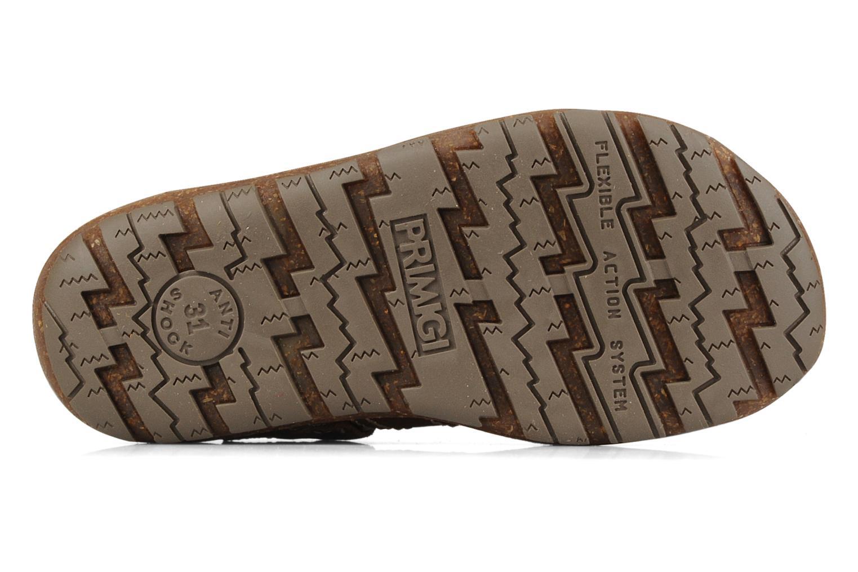 Sandali e scarpe aperte Primigi Torquato Marrone immagine dall'alto