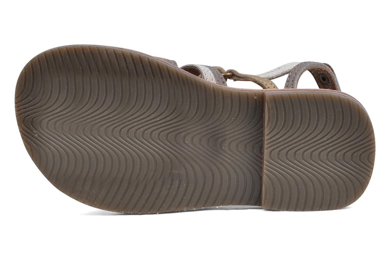 Sandales et nu-pieds chipie bis Savana Gris vue haut