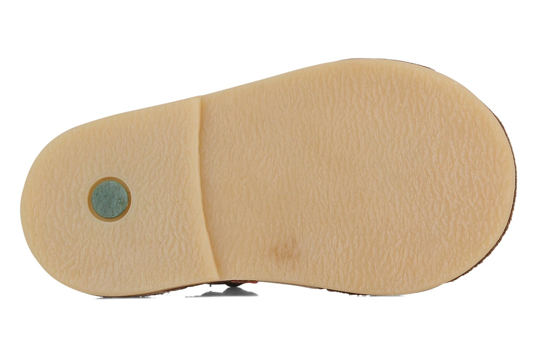 Sandales et nu-pieds Kickers Colombe B Marron vue haut