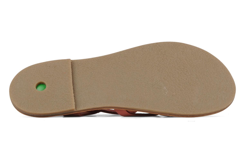 Sandales et nu-pieds Kickers Dialecta Rose vue haut