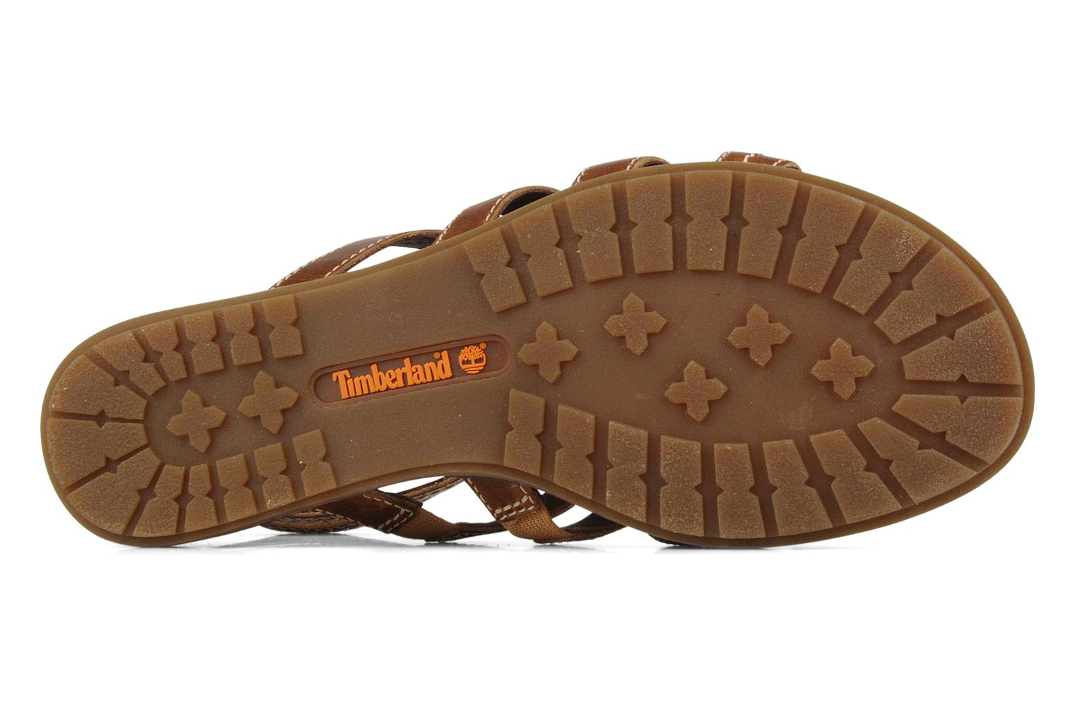 Sandales et nu-pieds Timberland Earthkeepers kennebunk braided gladiator Marron vue haut