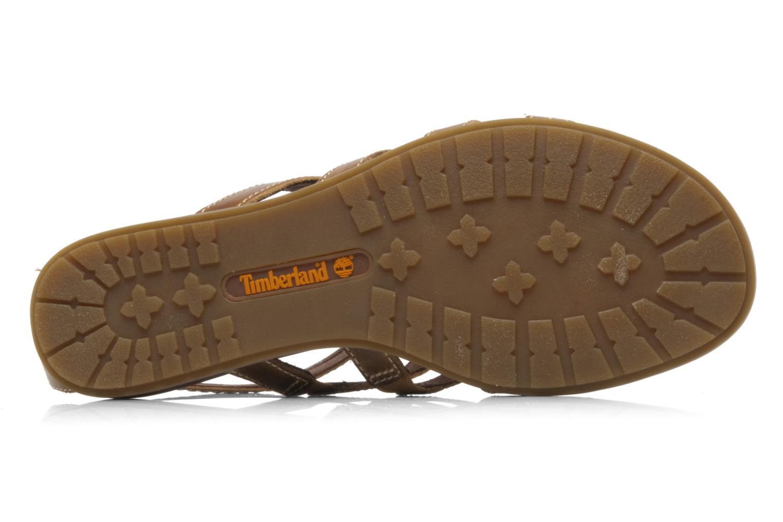 Sandales et nu-pieds Timberland Earthkeepers kennebunk braided gladiator Marron vue haut