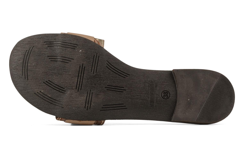 Plancha Kaki