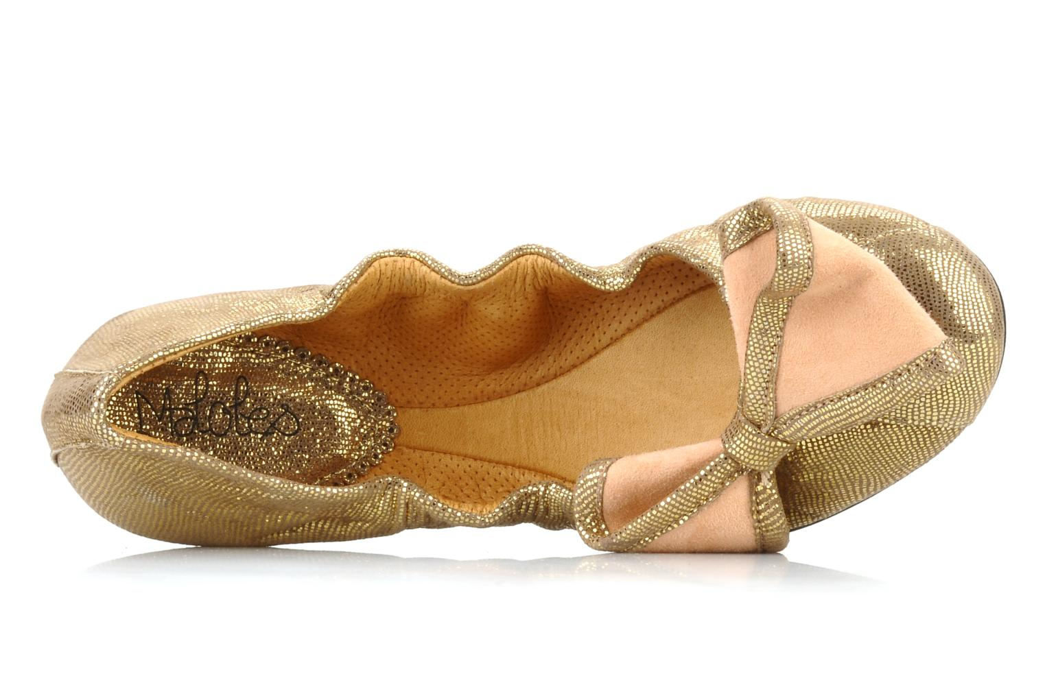 Ballet pumps Maloles Blanche Bronze and Gold view from the left