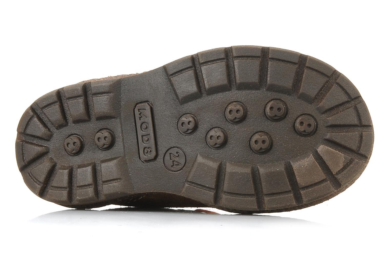 Stiefeletten & Boots Mod8 Ricor braun ansicht von oben