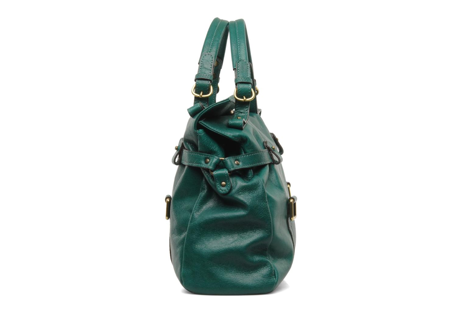 Handbags Abaco Puma Green view from the right