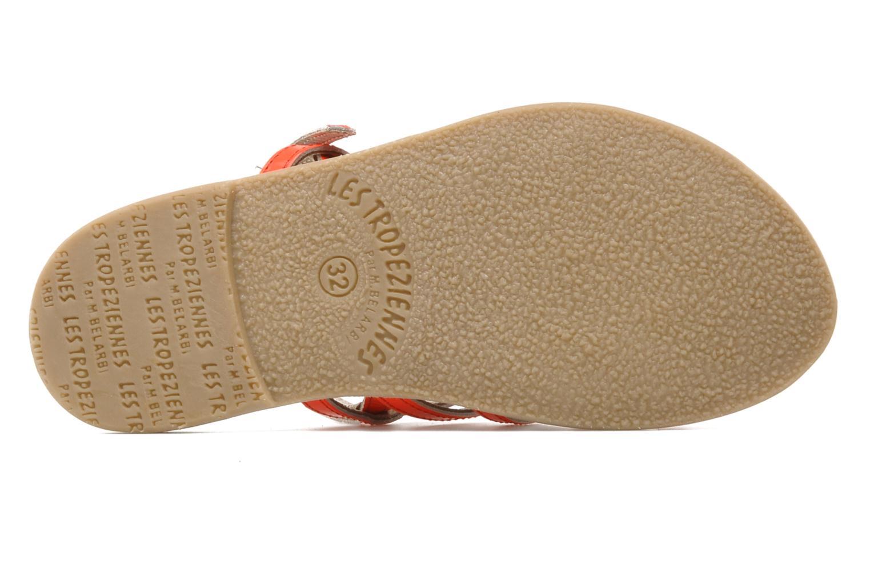 Sandales et nu-pieds Les Tropéziennes par M Belarbi Herflash E Rose vue haut