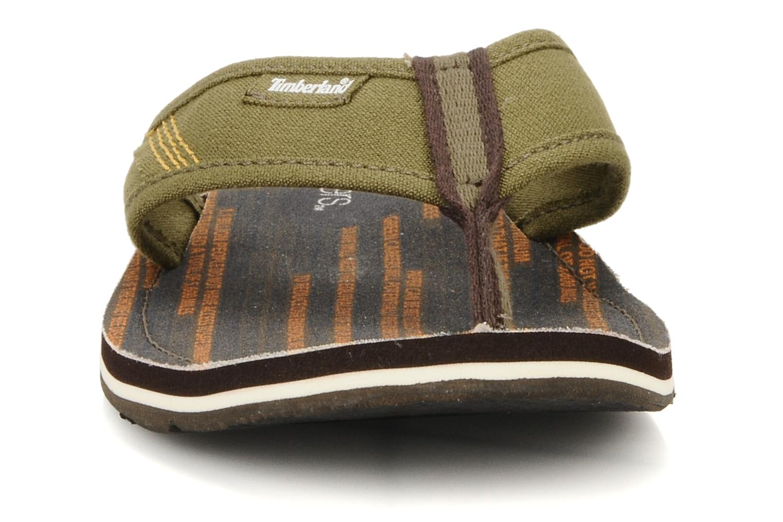 Flip flops Timberland Earthkeppers sandal Grqphic Flip Flop Green model view