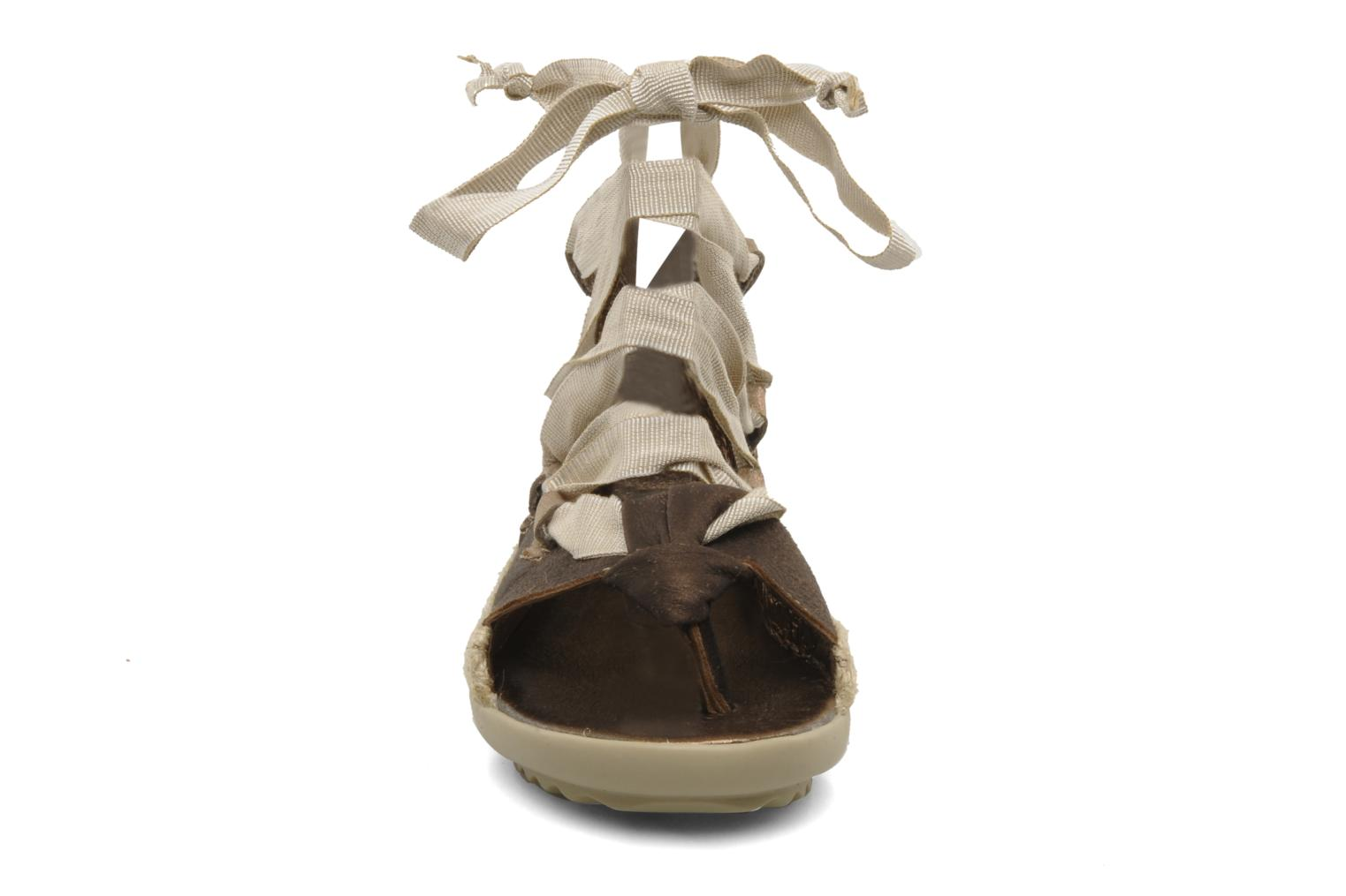 Sandals Pataugas Midnight e Brown model view