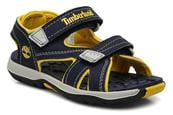 Navy with Yellow
