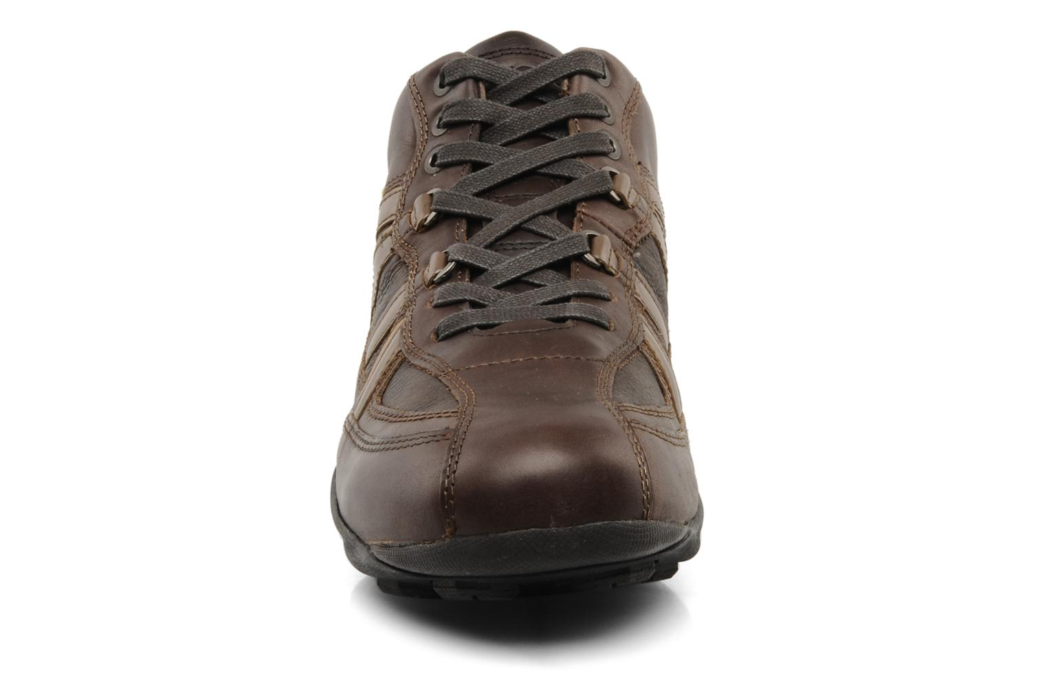 Trainers Geox U New Early Brown model view