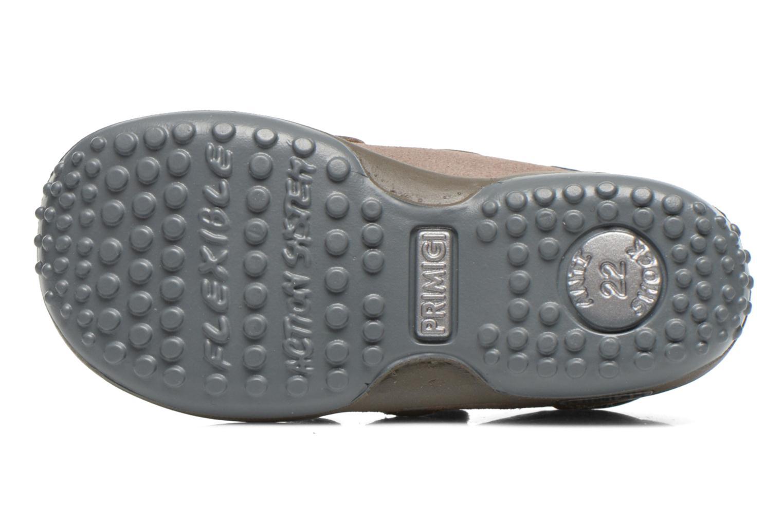 Chaussures à scratch Primigi Albin Gris vue haut
