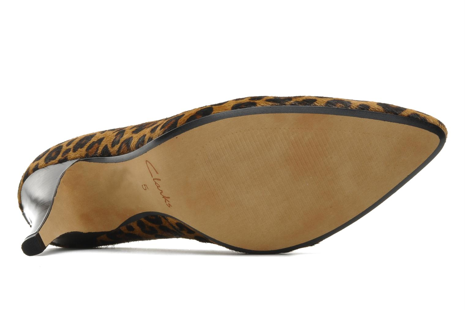 High heels Clarks Cedar Chest Multicolor view from above