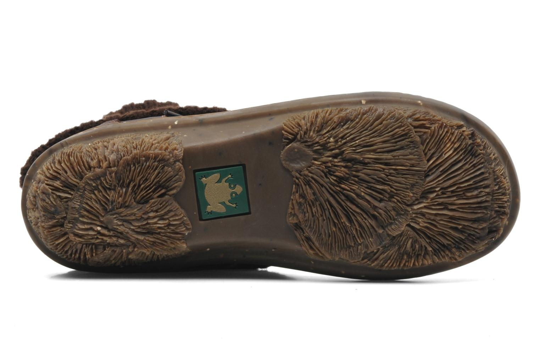 Stiefeletten & Boots El Naturalista Funghi N°381 braun ansicht von oben
