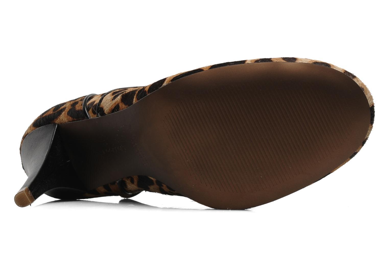 Bottines et boots Rockport Presia zip shootie Multicolore vue haut
