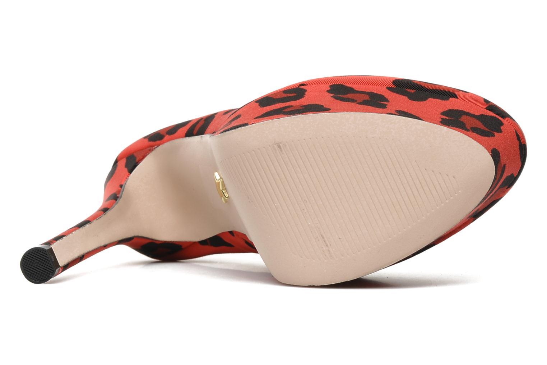 Delight Red leopard grosgrain
