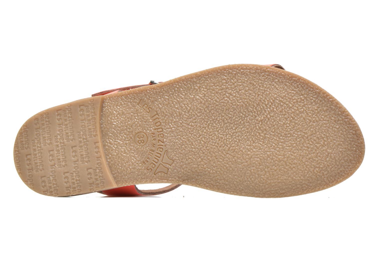 Sandali e scarpe aperte Les Tropéziennes par M Belarbi Hiliona Arancione immagine dall'alto