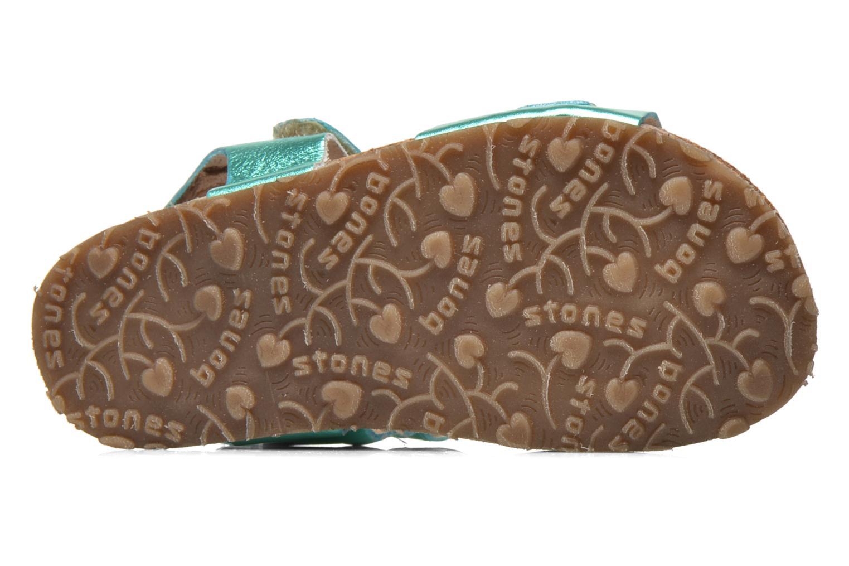 Sandales et nu-pieds Stones and Bones Cleo Vert vue haut