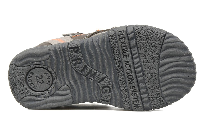 Sandales et nu-pieds Primigi Cooper Gris vue haut
