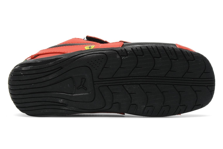 Drift Cat 5 L SF V Kids Rosso corsa-black