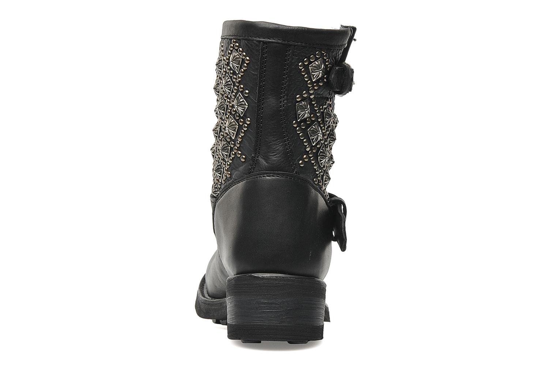 Boots en enkellaarsjes Ash Tsar Zwart rechts