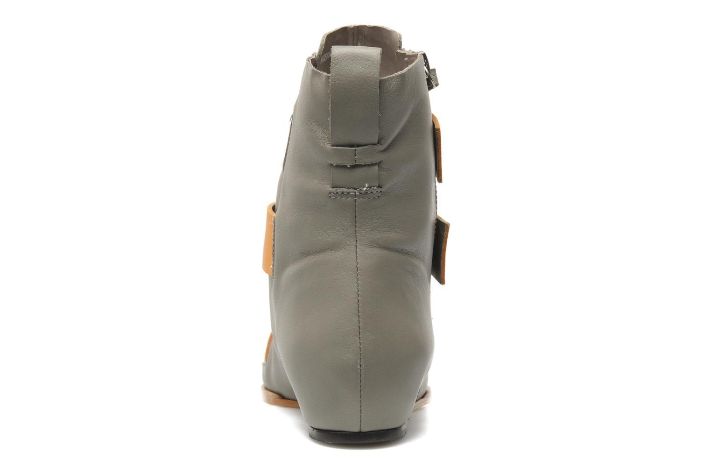 Boots en enkellaarsjes Skin by Finsk Sadie Grijs rechts