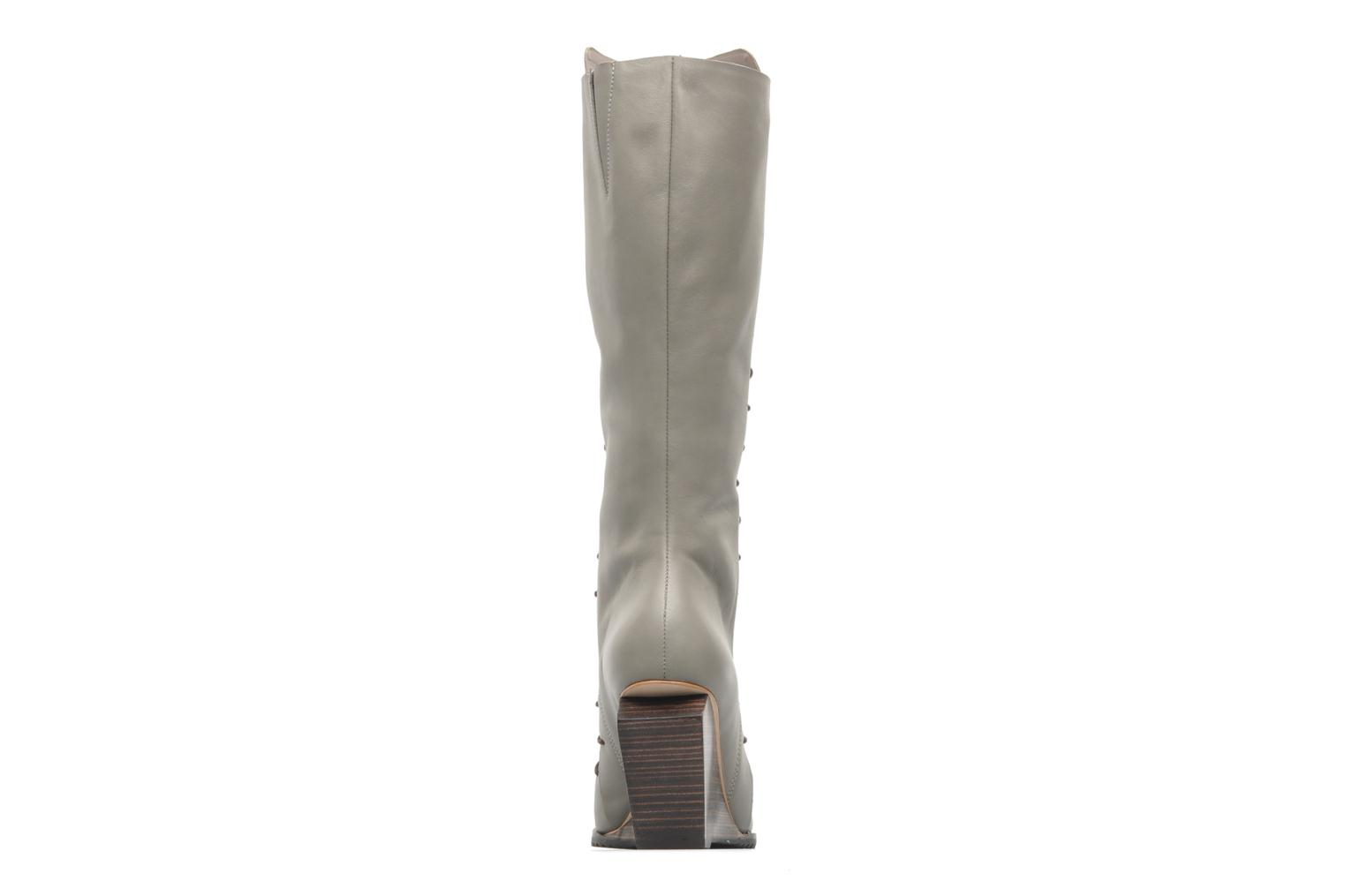 Bottes Skin by Finsk Kirsty Gris vue droite