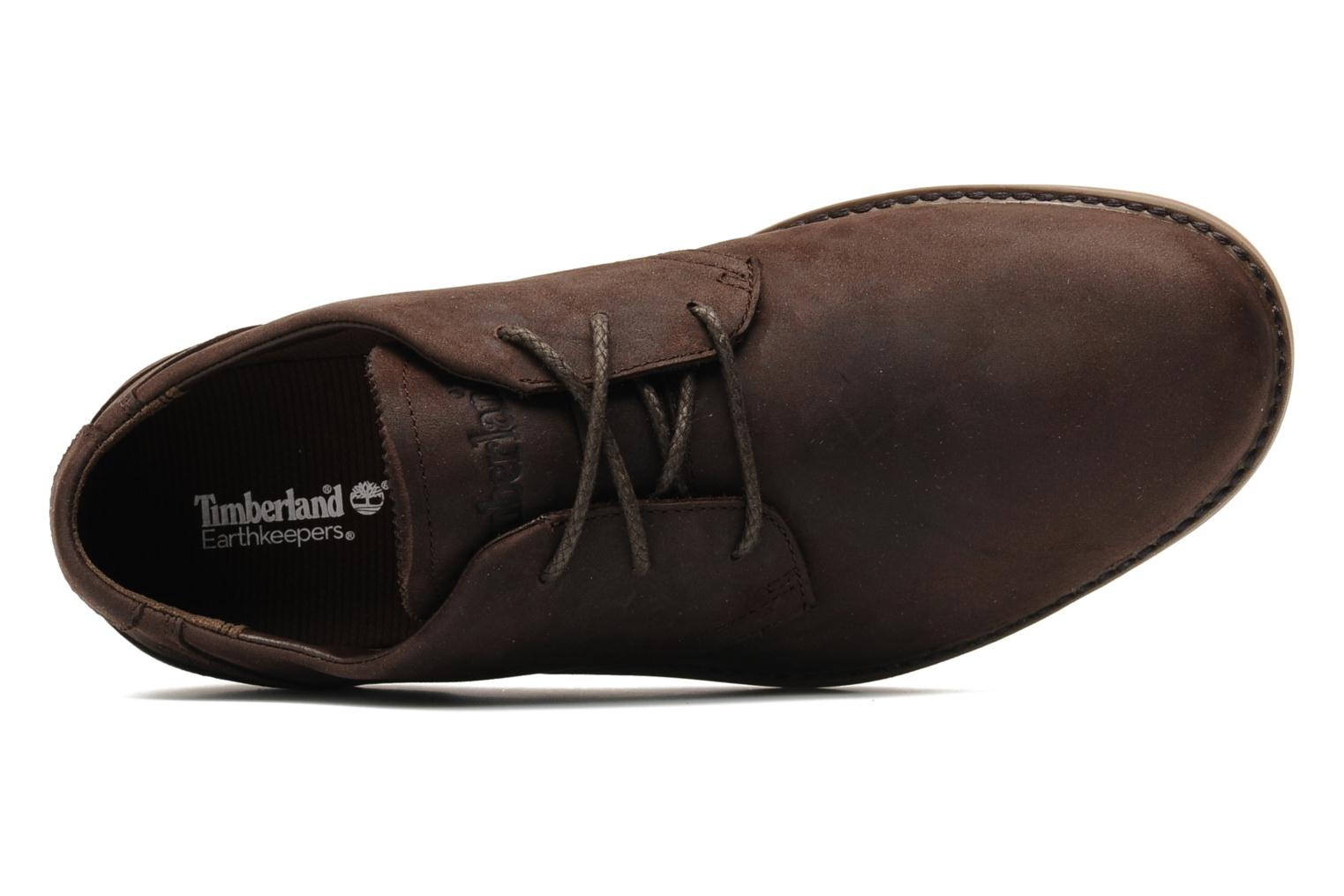 Veterschoenen Timberland Earthkeepers Travel Oxford Bruin links
