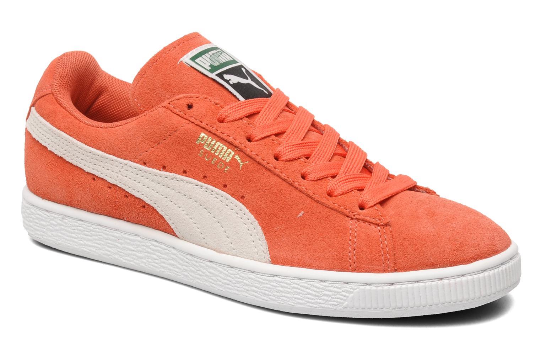 puma arancione