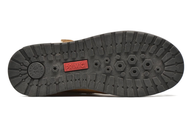 Stiefeletten & Boots Primigi ASPY 1 braun ansicht von oben