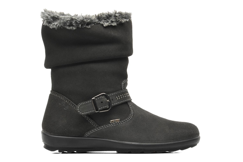 Boots en enkellaarsjes Primigi Glossy GTX Grijs achterkant