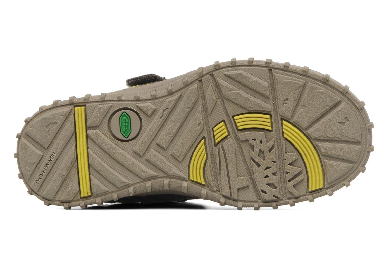 Sneakers Timberland EK Castleton Fisherman Bruin boven