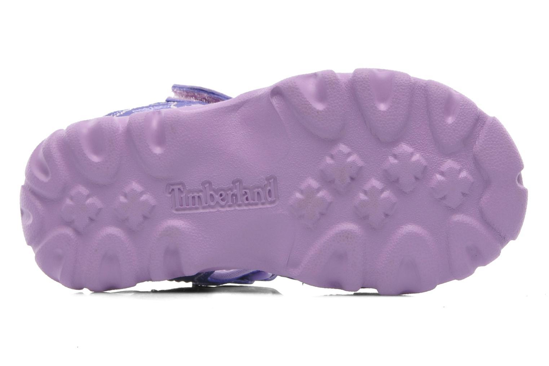 Sandals Timberland Splashtown Closed Toe Sandal Purple view from above