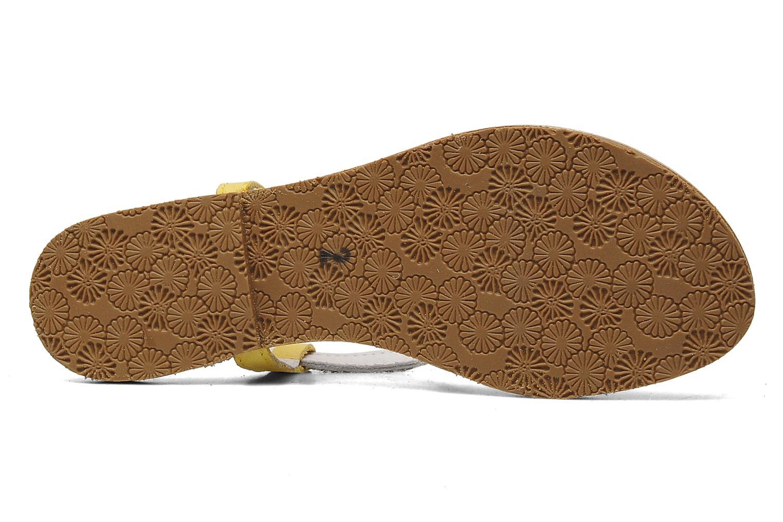 Sandales et nu-pieds Acebo's Dandelion Multicolore vue haut