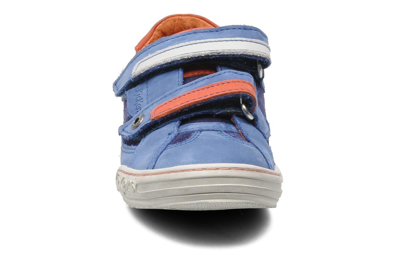 Sneakers Kickers Jingembre Blå bild av skorna på