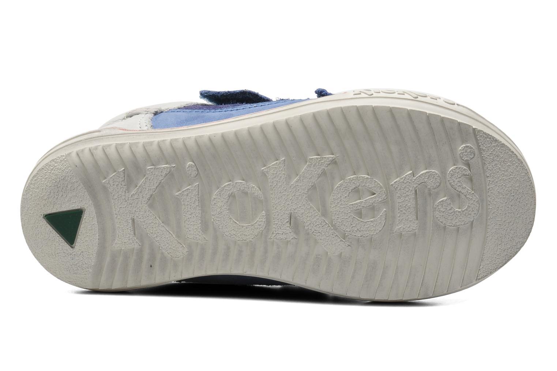 Sneakers Kickers Jingembre Blå bild från ovan