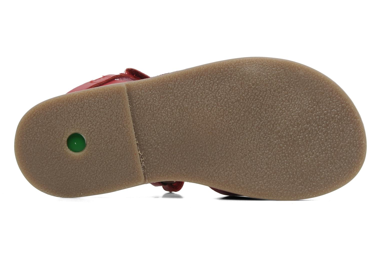 Sandalen Kickers Parma Rood boven